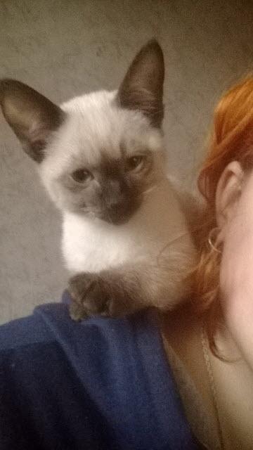 Оксана и котик Ф